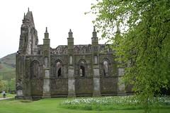 Ruins of the Abbey Church at Holyrood, Edinburgh (1)