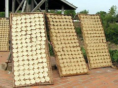 Rice cakes drying in Luang Prabang, Laos
