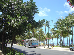 Kuhio Beach - Trolley