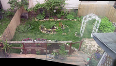 the garden at the end of May