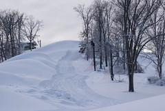 December 13, 2010 Holy SNOW!!! 097