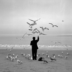 coney island bird man photo by Barry Yanowitz