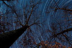 Startrail - First Attempt photo by City Eyes