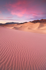 Desert Dream - Ibex Sand Dunes, Death Valley National Park photo by Joshua Cripps