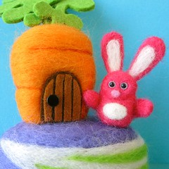 The Pinkmeister and His Carrot Crib photo by squirrel momma