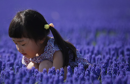 Japanese girl in blue 1