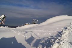 December 13, 2010 Holy SNOW!!! 036
