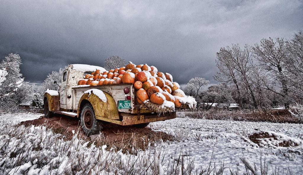 COLORADO, HERE WE COME! (Pic: Loukonen Farms Pumpkin Truck, Colorado) photo by wilsonaxpe