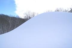 December 13, 2010 Holy SNOW!!! 104