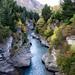 N Zealand