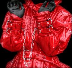 Shiny red photo by klepptomanie
