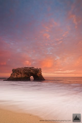 Bleeding Heaven - Natural Bridges State Park, California photo by david.richter