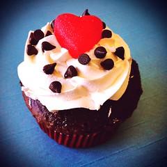 Cupcake photo by gastelummoller