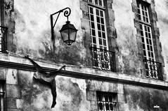 Help! photo by Ermanno Albano