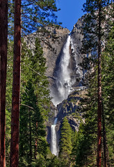 Yosemite Falls in HDR photo by Dave Toussaint (www.photographersnature.com)