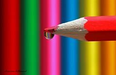 reflection (explore fp) photo by *Chris van Dolleweerd*