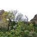 DGJ_2697 - Castle Pentefur