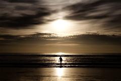 into the sea photo by Stefanie Hoepner