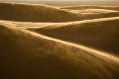 """Dance of Light and Sand"" Colorado~Dunes~National Park~Landscape~Photography photo by Dan Ballard Photography"
