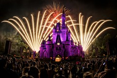 Magic Kingdom - Wishes - Fireworks Spectacular photo by Matt Pasant