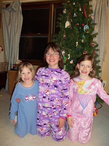 Christmas2010-DecoratingTree 012