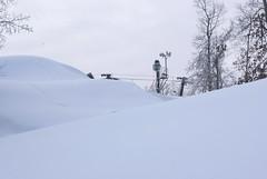 December 13, 2010 Holy SNOW!!! 101