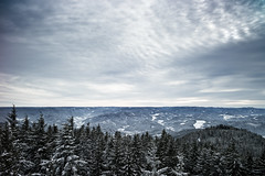 Schwarzwald photo by gato-gato-gato