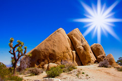 Rock formations at Joshua Tree National Park photo by Kartik J