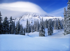 Mt. Rainier Winter Wonderland photo by David Shield Photography