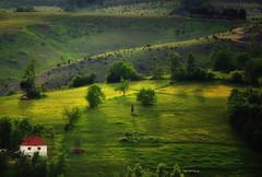 Zlatibor landscape photo by ceca67