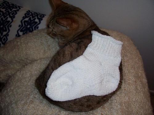 1st Sock