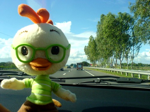 Chicken Little On The Road