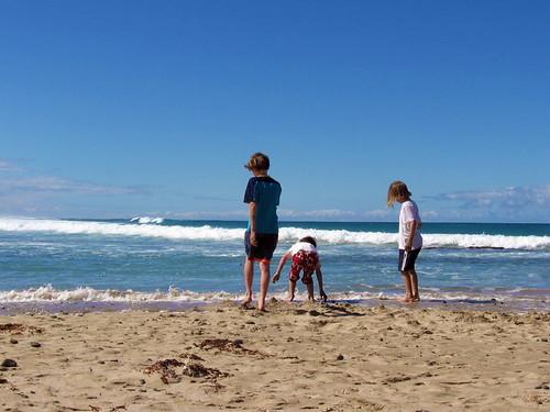 beach sunny1