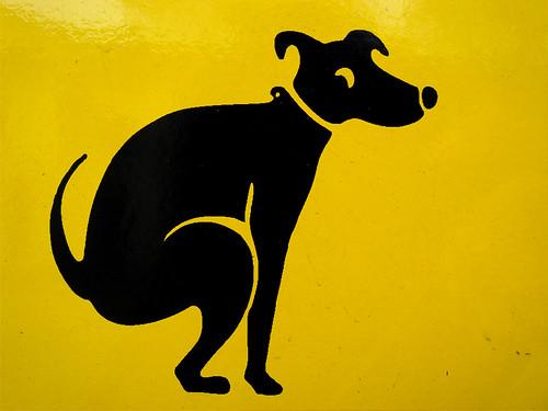 Deventer komt met hondenpoepplattegrond!