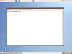 125299765_ecf228cc9d_m.jpg