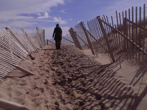 race point dune