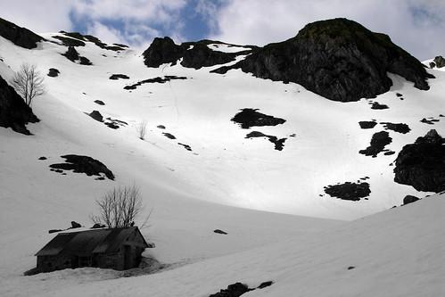 Cabane de Chérue en blanc/noir