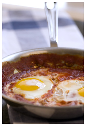 babbos eggs