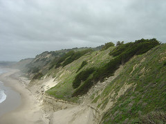 San Gregorio Park Cliff