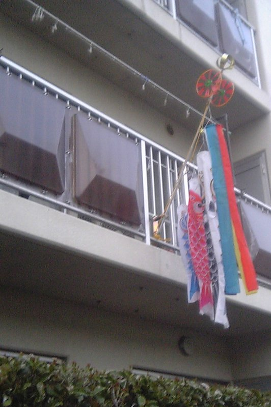 Balcony Carp Streamers