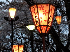 Park Lanterns in the Twilight