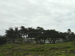 Housing on Spanish Bay