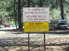 Yosemite - Bear Warning Sign