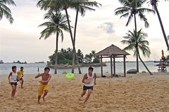 frisbee chase