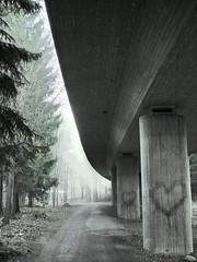 Urban Lovetrees photo by Sameli