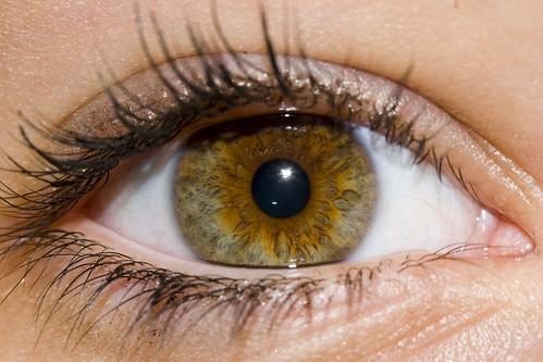 Julia Eye