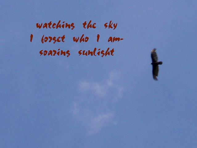 watchingthesky_00