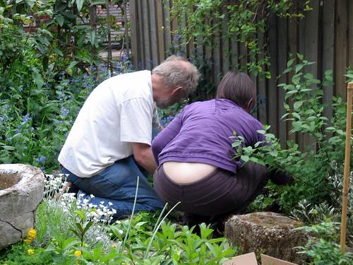 Gardeners in action!