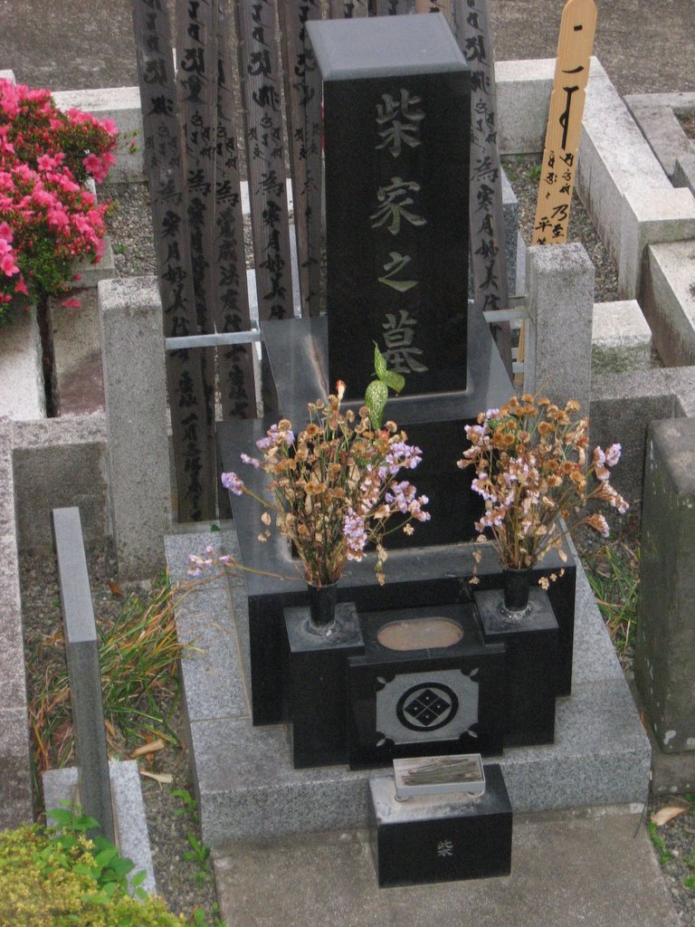 A single gravestone in a Japanese cemetary