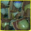 30729020454_4c13ea3b52_t